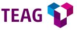 Teilnehmer Webinar Stromversorgung von TEAG